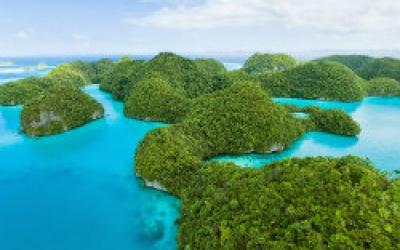 Ridge to Reef: Sustainable Resource Management in Palau